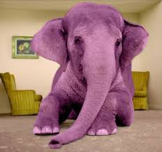 I'd volunteer or, 'Ignoring The Pink Elephant In The Living Room""