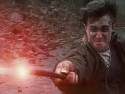 Harry Potter's MagicWand