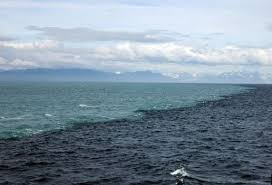 saltwaterboundary