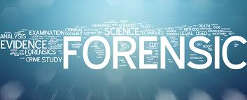 The Fight: evidence andforensics